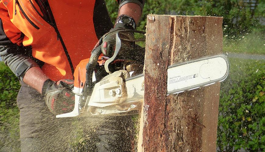 fsanl_chainsaw_safety