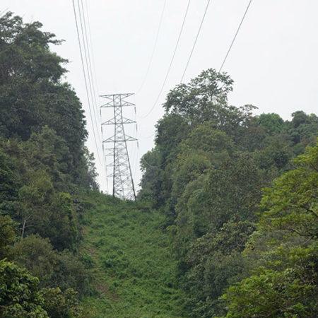 Power Line Hazard