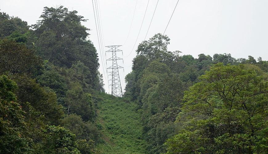 fsanl_powerlines